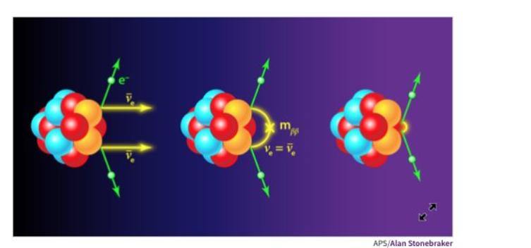 Rappresentazione del doppio decadimento beta senza neutrini