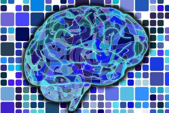 """Settimana del Cervello 2018: """"Non c'è muscolo senza cervello"""""""
