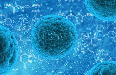 Malattie rare: presentato il V Rapporto MonitoRare