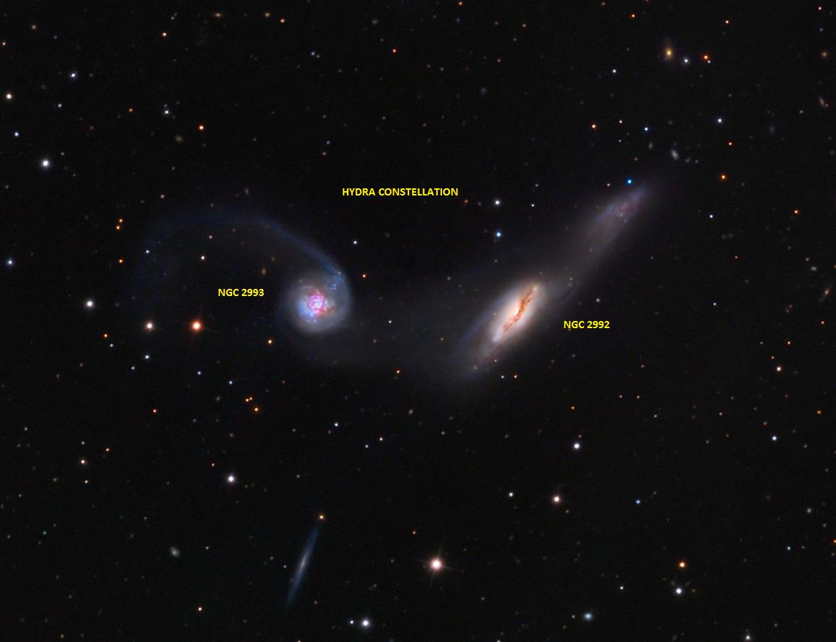 Immagine della galassia NGC 2992 nella costellazione dell'Idra, a destra tra le due in primo piano. Crediti: Adam Block/Mount Lemmon SkyCenter/University of Arizon
